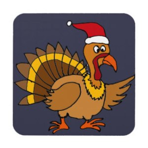 This was the lucky pardoned turkey. He 's now determined to spread some serious holiday cheer.