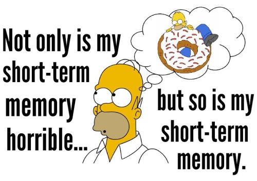 homer short term memory