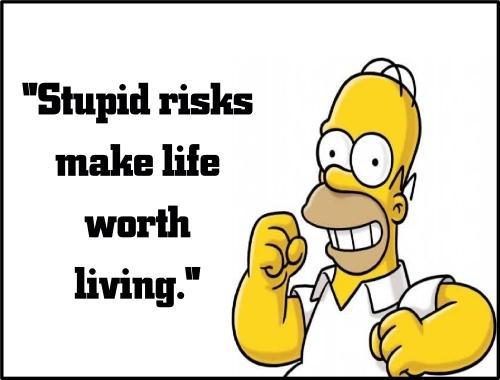 homer stupid risks