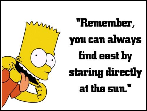 bart simpson stare at the sun