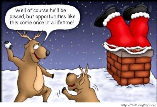 reindeer32