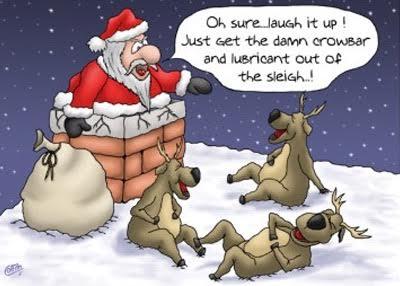 reindeer39
