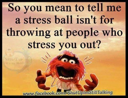 stress24