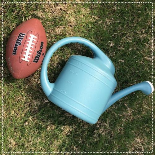 Our watering can getting in on the action by catching a football.