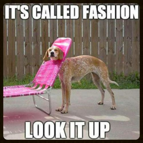 It seems anything goes in the world of fashion...
